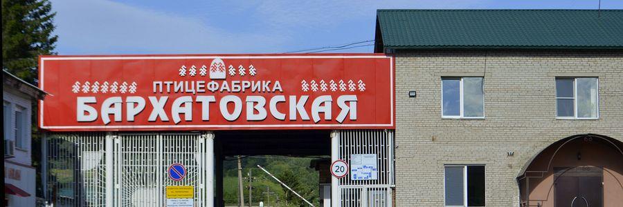 Бархатово (Берёзовский район)